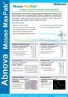 Mouse MaxPab� : A New Breed of Polyclonal Antibodies