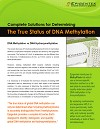 The True Status of DNA Methylation
