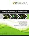 Histone Methylation and Demethylation