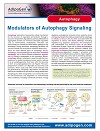 Modulators of Autophagy Signalling