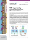 The TNF Superfamily: Linking Autoimmune Diseases, Inflammation and Cancer