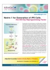 Netrin-1 for Generation of iPS Cells