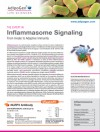 Inflammasome Signalling: From Innate to Adaptive Immunity
