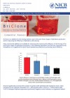 BriClone Competitor Analysis