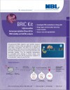 BRIC Kit: 5-Bromouridine Immunoprecipitation Chase Kit