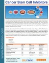Cancer Stem Cell Inhibitors