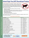 Animal Origin Free (AOF) Recombinant Proteins