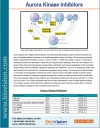 Aurora Kinase Inhibitors