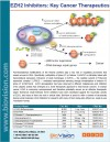 EZH2 Inhibitors: Key Cancer Therapeutics