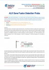 ALK Gene Fusion Detection Probe